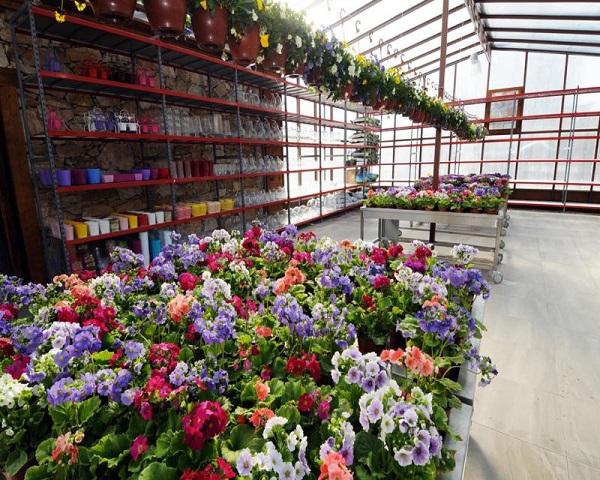 Çiçek Satış Merkezi Hizmet Vermeye Başladı