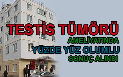 testis